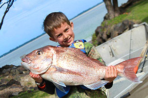 rangiputa snapper fishing