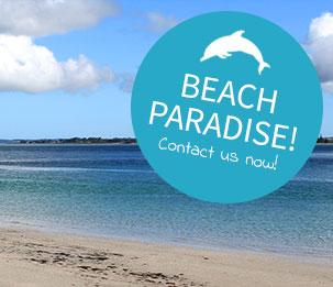 rangiputa beach karikari peninsula